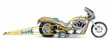 OCC NAPA Bike 1
